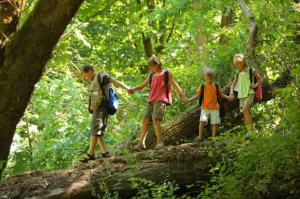 3-summer-camps-for-kids-with-celiac-disease
