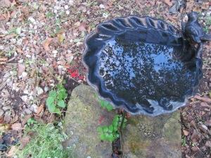 Fall Birdbath