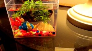 littlefishes1AA